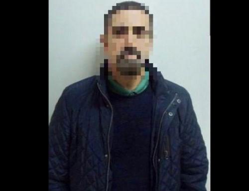 Tyrkiet anholder dansk-kurder i PKK-sag